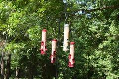 Σωληνοειδείς τροφοδότες πουλιών Στοκ εικόνα με δικαίωμα ελεύθερης χρήσης