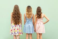 Σύγκριση hairstyle με τη γυναίκα τρία στοκ φωτογραφία