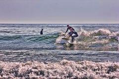 Σύγκρουση Surfers στην παραλία Higgens, Μαίην στοκ εικόνες