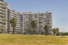 Σύγχρονα κτήρια σε Pocitos Μοντεβίδεο Ουρουγουάη Στοκ εικόνες με δικαίωμα ελεύθερης χρήσης