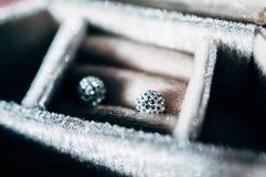 Σύγχρονα μοντέρνα σκουλαρίκια Στοκ Φωτογραφία