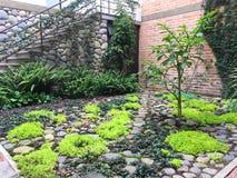 Σύγχρονα τοπίο και σκαλοπάτια κήπων στοκ εικόνες