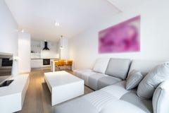 Σύγχρονες εσωτερικές καθιστικό και κουζίνα σχεδίου Στοκ Εικόνα