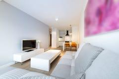Σύγχρονες εσωτερικές καθιστικό και κουζίνα σχεδίου Στοκ εικόνες με δικαίωμα ελεύθερης χρήσης