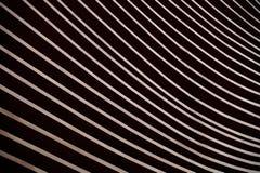 Σύγχρονες ξύλινες γραμμές Στοκ εικόνες με δικαίωμα ελεύθερης χρήσης