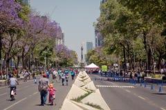 Σύγχρονη αρχιτεκτονική, πάρκα και ενσωμάτωση του κέντρου της Πόλης του Μεξικού Στοκ Εικόνα