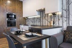Σύγχρονη εσωτερική κουζίνα σχεδίου Στοκ Εικόνες