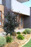 Σύγχρονη κάθετη εικόνα Βικτώριας Αυστραλία αρχιτεκτονικής εξωτερική στοκ φωτογραφία με δικαίωμα ελεύθερης χρήσης