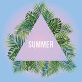 Σύγχρονη και μοντέρνη τυπογραφική αφίσα σχεδίου Καλοκαίρι κειμένων στο α Στοκ Εικόνες