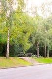 Σύγχρονη σκάλα στο πάρκο Υπόβαθρο, φύση Στοκ Εικόνα
