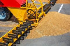 Σύγχρονοι φορτωτής σιταριού και όχημα μηχανημάτων γεωργίας χωρισμού, εργασία εχθρών μηχανών καλλιέργειας με τη συγκομιδή στοκ φωτογραφία με δικαίωμα ελεύθερης χρήσης