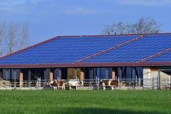 Σύγχρονος σταύλος με ένα ηλιακό σύστημα στοκ φωτογραφίες με δικαίωμα ελεύθερης χρήσης