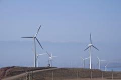Στρόβιλος ανεμόμυλων, αιολική ενέργεια, πράσινη ενέργεια Στοκ εικόνες με δικαίωμα ελεύθερης χρήσης