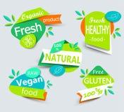 Σύγχρονο διανυσματικό σύνολο υγιών ετικετών οργανικής τροφής απεικόνιση αποθεμάτων