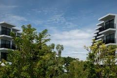 Σύγχρονο κτίριο γραφείων με τα πράσινα δέντρα Στοκ Εικόνες