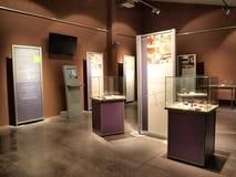 Σύγχρονο μουσείο, Krzemionki, Πολωνία Στοκ φωτογραφία με δικαίωμα ελεύθερης χρήσης