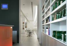 σύγχρονο σαλόνι τριχώματος Στοκ Φωτογραφία