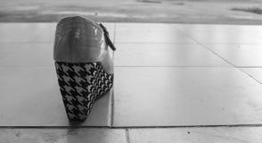 Σύγχρονο υψηλό τακούνι μόδας στοκ εικόνα με δικαίωμα ελεύθερης χρήσης