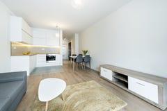 σύγχρονο δωμάτιο διαβίωσ& Στοκ Εικόνες
