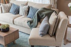 σύγχρονο ύφος καθιστικών με τον καφετή σύγχρονο καναπέ Στοκ εικόνα με δικαίωμα ελεύθερης χρήσης