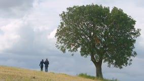 Σύζυγος και σύζυγος που περπατούν στον τομέα χέρι-χέρι, παντρεμένο ζευγάρι μαζί για πάντα φιλμ μικρού μήκους