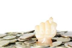 σύκο νομισμάτων Στοκ Εικόνες