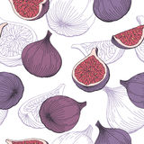 Σύκων φρούτων γραφική απεικόνιση σκίτσων σχεδίων χρώματος άνευ ραφής Στοκ Εικόνα