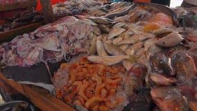 Σύλληψη των αστακών στην αγορά ψαριών απόθεμα βίντεο
