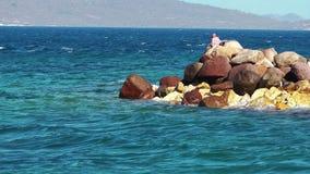 Σύλληψη των ψαριών στους βράχους απόθεμα βίντεο