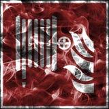 Σύμβολα καπνού έκτακτης ανάγκης για τον πυροσβεστικό εξοπλισμό Τυποποιημένο σημάδι πυρασφάλειας για το εξέλικτρο μανικών πυρκαγιά ελεύθερη απεικόνιση δικαιώματος