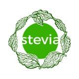 Σύμβολο τέχνης του stevia Διανυσματική οργανική τροφή ελεύθερη απεικόνιση δικαιώματος
