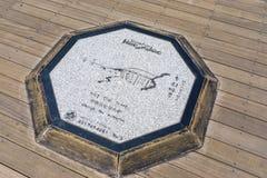 Σύμβολο του σπιτιού του APEC Nurimaru και της γέφυρας Gwangandaegyo στο octago Στοκ εικόνα με δικαίωμα ελεύθερης χρήσης