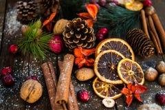 Σύμβολα Χριστουγέννων όπως το χιόνι, καρύδια, μούρα Στοκ Εικόνες