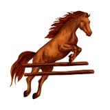 Σύμβολο άλματος αλόγων για τον ίππειο αθλητισμό horserace απεικόνιση αποθεμάτων