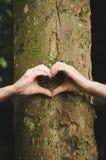 Σύμβολο αγάπης καρδιών χεριών στοκ εικόνα με δικαίωμα ελεύθερης χρήσης