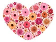 Σύμβολο καρδιών από τα ετερόκλητα λουλούδια στο λευκό στοκ φωτογραφία
