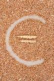 Σύμβολο που γίνεται ευρο- από το σιτάρι σίτου Στοκ εικόνες με δικαίωμα ελεύθερης χρήσης