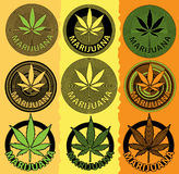 Σύμβολο σχεδίου φύλλων καννάβεων μαριχουάνα Στοκ Φωτογραφίες