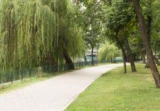 Σύμμαχος πάρκων στοκ εικόνα με δικαίωμα ελεύθερης χρήσης