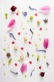 Σύνθεση άνοιξης με τα διάφορα λουλούδια, τα αστέρια γλυκάνισου και τις καρδιές στο λευκό Στοκ Φωτογραφία