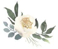 Σύνθεση γαμήλιων floral ανθοδεσμών Watercolor με τα άσπρα τριαντάφυλλα α διανυσματική απεικόνιση