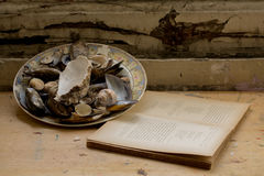 Σύνθεση ενός πιάτου που γεμίζουν με τα μαλάκια και ένα βιβλίο Στοκ Εικόνα