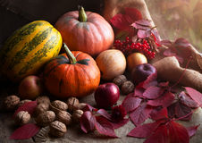 Σύνθεση διακοσμήσεων σχεδίου τροφίμων φθινοπώρου με Στοκ Εικόνες