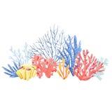 Σύνθεση κοραλλιών Watercolor απεικόνιση αποθεμάτων