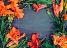 Σύνθεση λουλουδιών Πλαίσιο στεφανιών φιαγμένο από πορτοκαλιά λουλούδια κρίνων στο σκοτεινό ξύλινο υπόβαθρο Τέχνη, εξωτικός, θεριν στοκ εικόνα