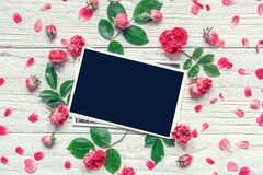 Σύνθεση λουλουδιών πλαίσιο φιαγμένο από ρόδινα ροδαλά λουλούδια με το κενό πλαίσιο φωτογραφιών Στοκ Φωτογραφίες