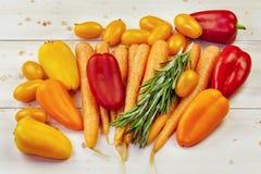 Σύνθεση με τα πιπέρια, ντομάτες, καρότα, βασιλικός στοκ εικόνα