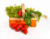 Σύνθεση με τις ντομάτες και τα χορτάρια Στοκ Φωτογραφίες