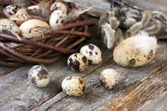 Σύνθεση Πάσχας με τα αυγά και τους κλάδους άνοιξη Στοκ Φωτογραφίες
