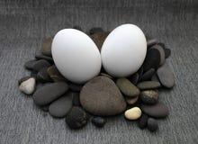 Σύνθεση Πάσχας με το αυγό και το φτερό Στοκ Εικόνες